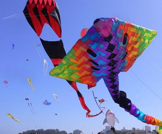 Kite Festival Jaipur Rajasthan